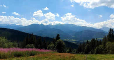 zdjęcie przedstawiające widok gór w odcieniach błękitu, zieleni i fioletu